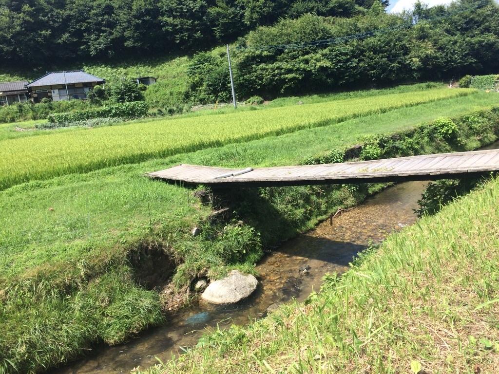 f:id:yururiururi:20180819223134j:image