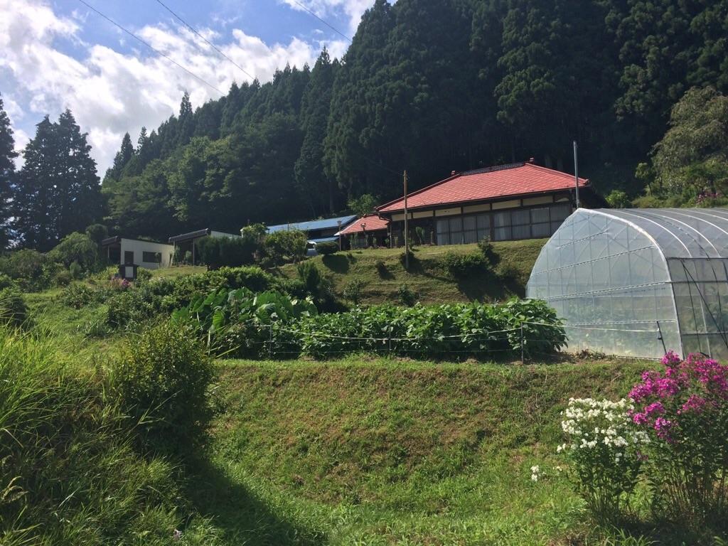 f:id:yururiururi:20180819223457j:image