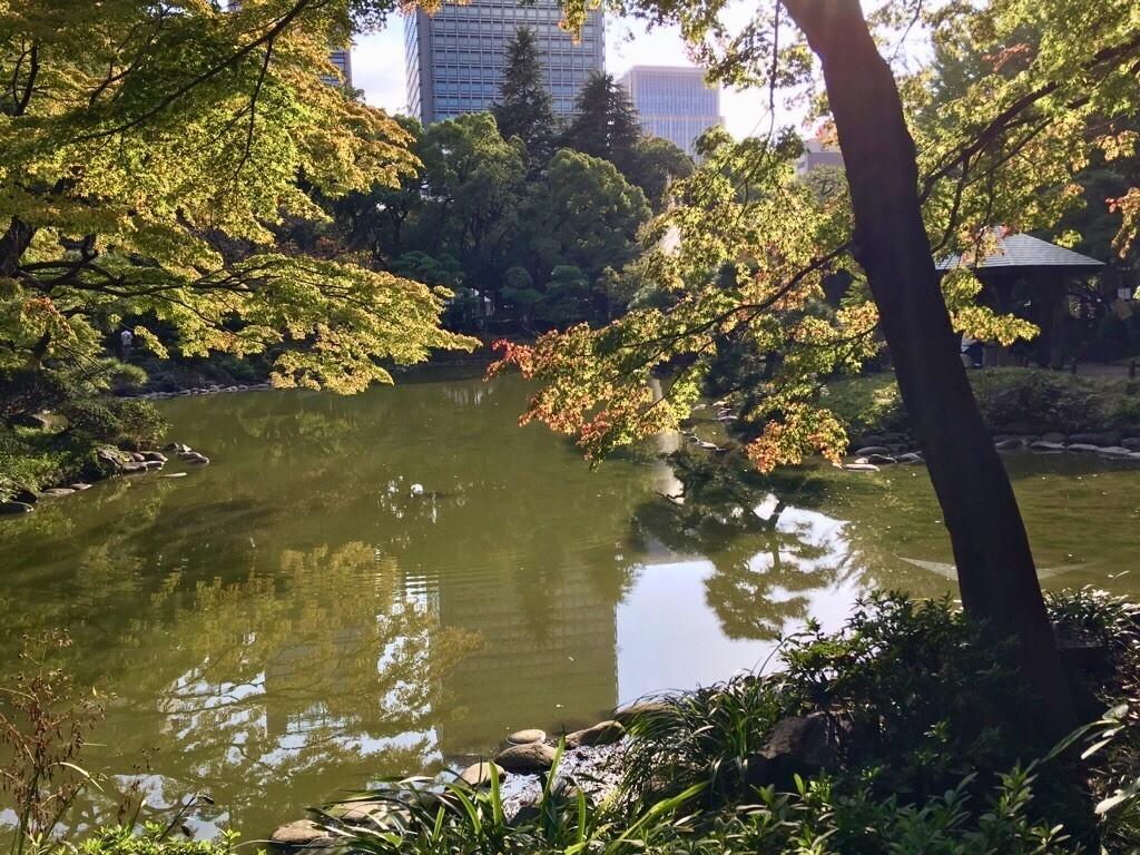 f:id:yururiururi:20181029192141j:image