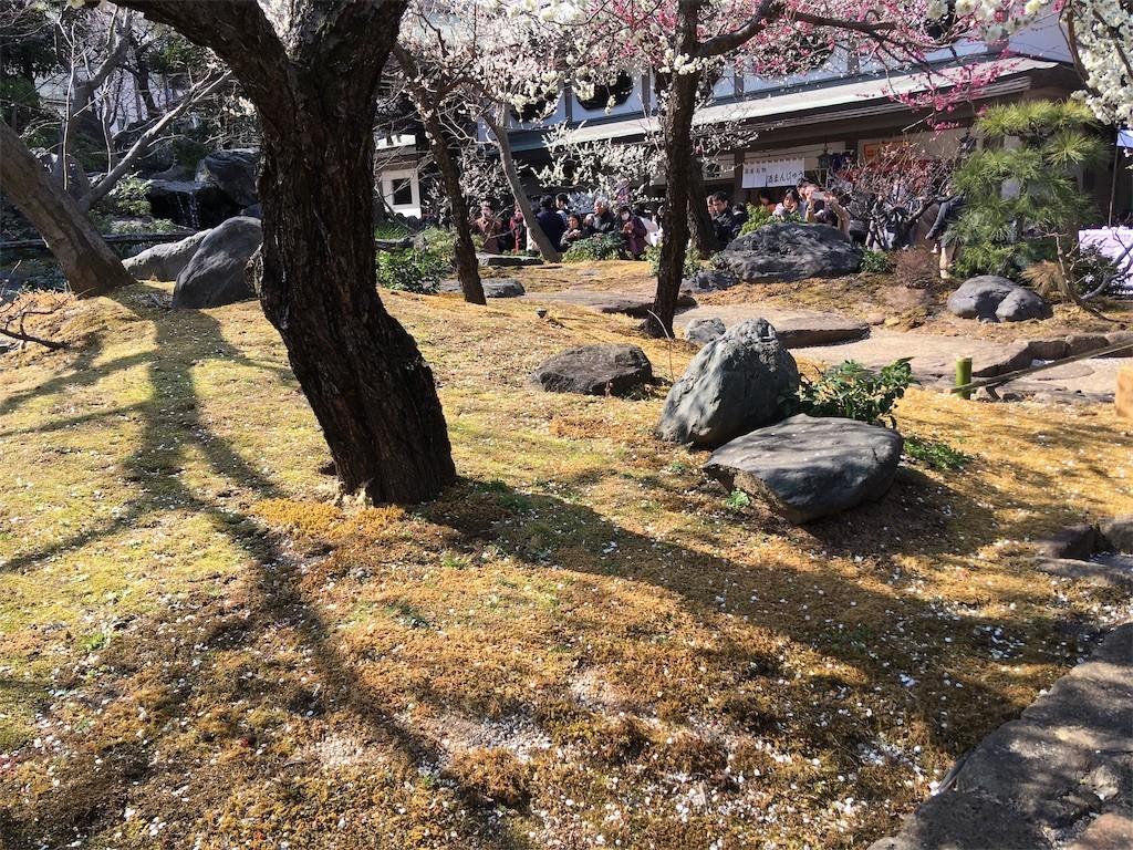 f:id:yururiururi:20190223225759j:image