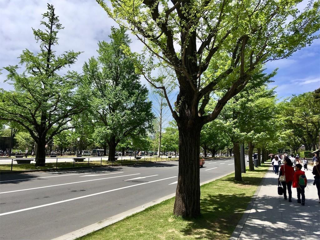 f:id:yururiururi:20190502012706j:image