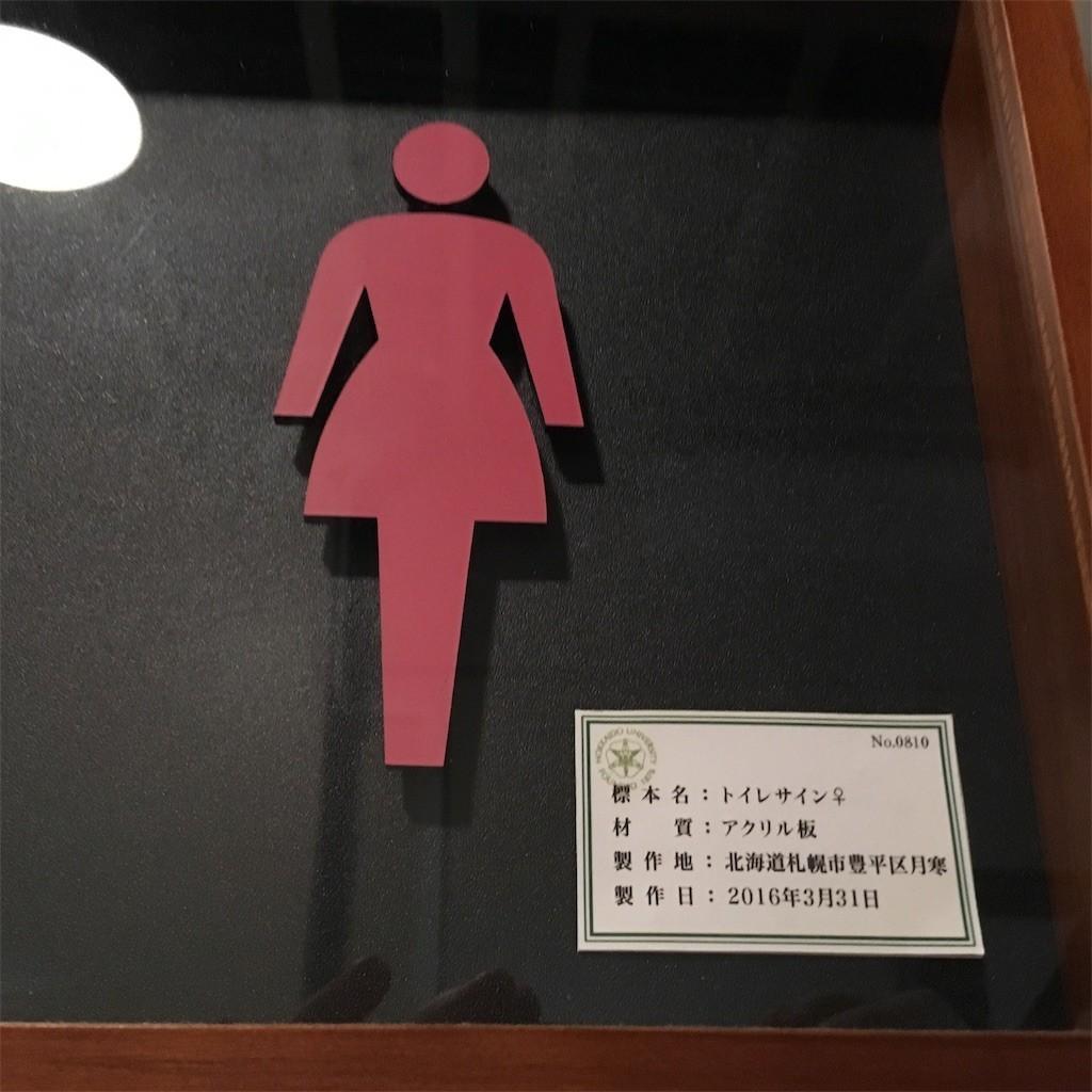 f:id:yururiururi:20190915005819j:image