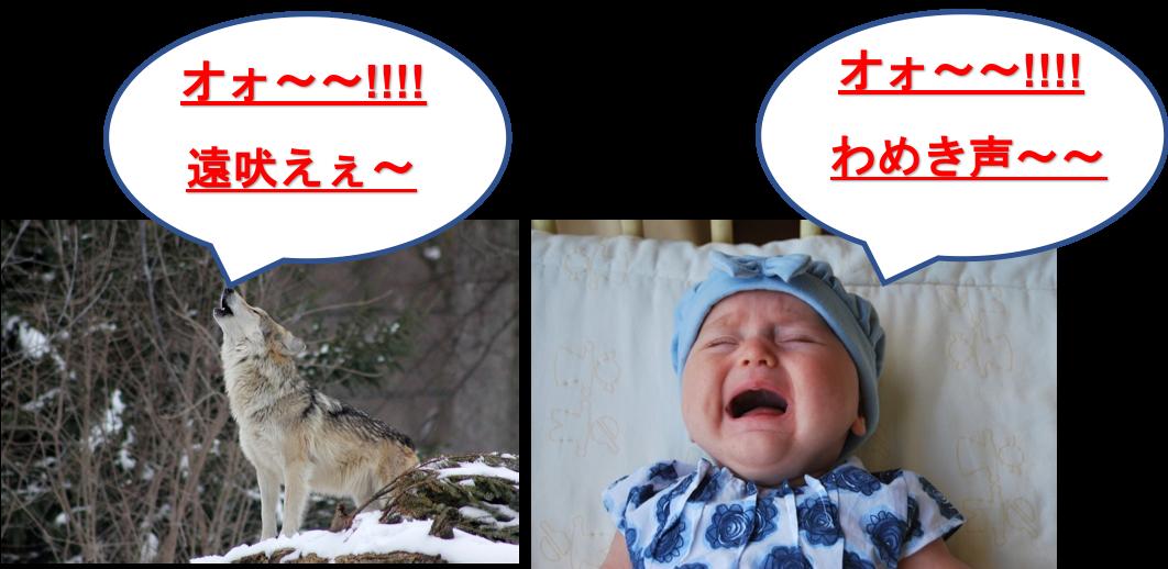 f:id:yurute:20191231232847p:plain