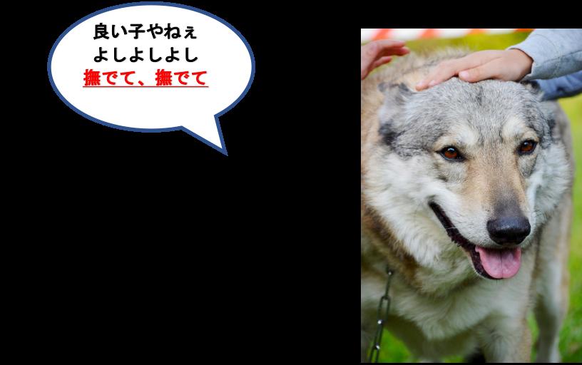 f:id:yurute:20200128133107p:plain