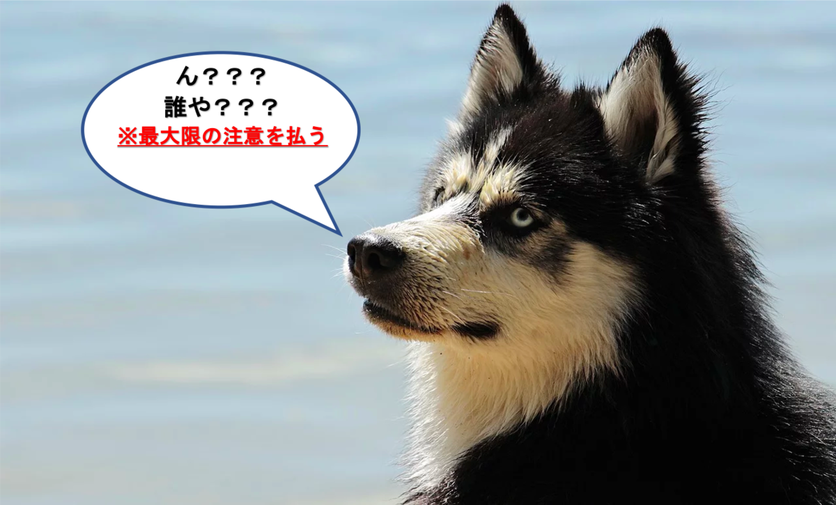 f:id:yurute:20200207010228p:plain