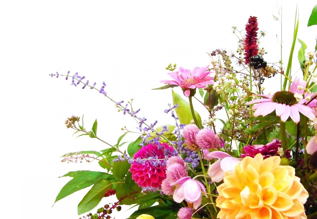 f:id:yurutto15:20210421115241j:plain
