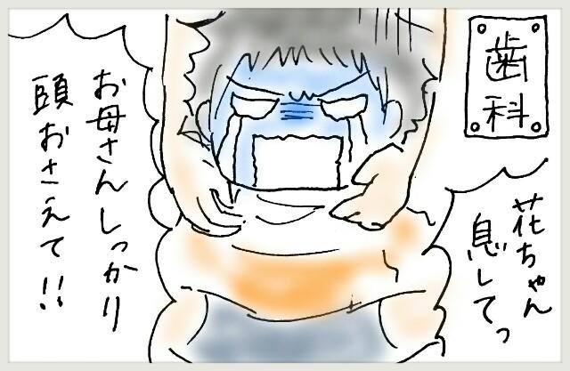 f:id:yuruyakanasakamichi:20170614160610j:image