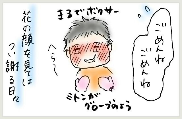 f:id:yuruyakanasakamichi:20170629125500j:image