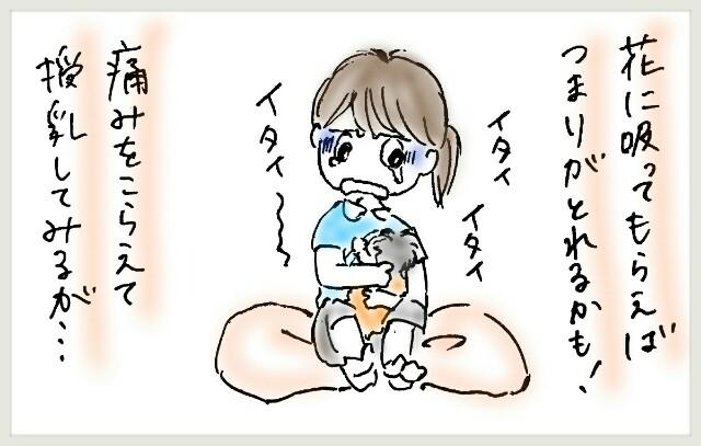 f:id:yuruyakanasakamichi:20170629125752j:image