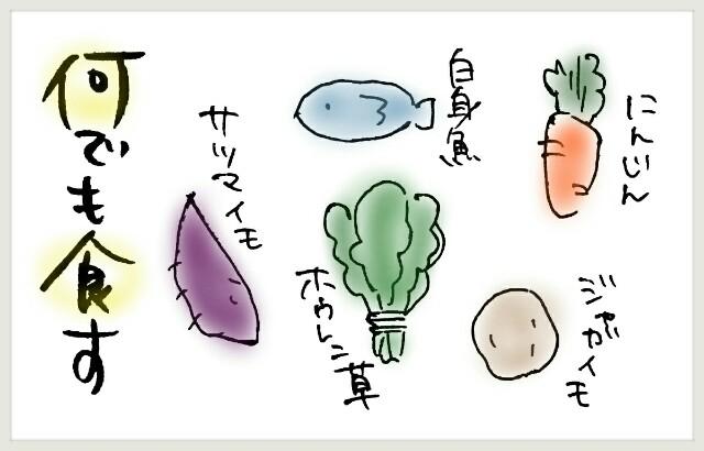 f:id:yuruyakanasakamichi:20170802160006j:image