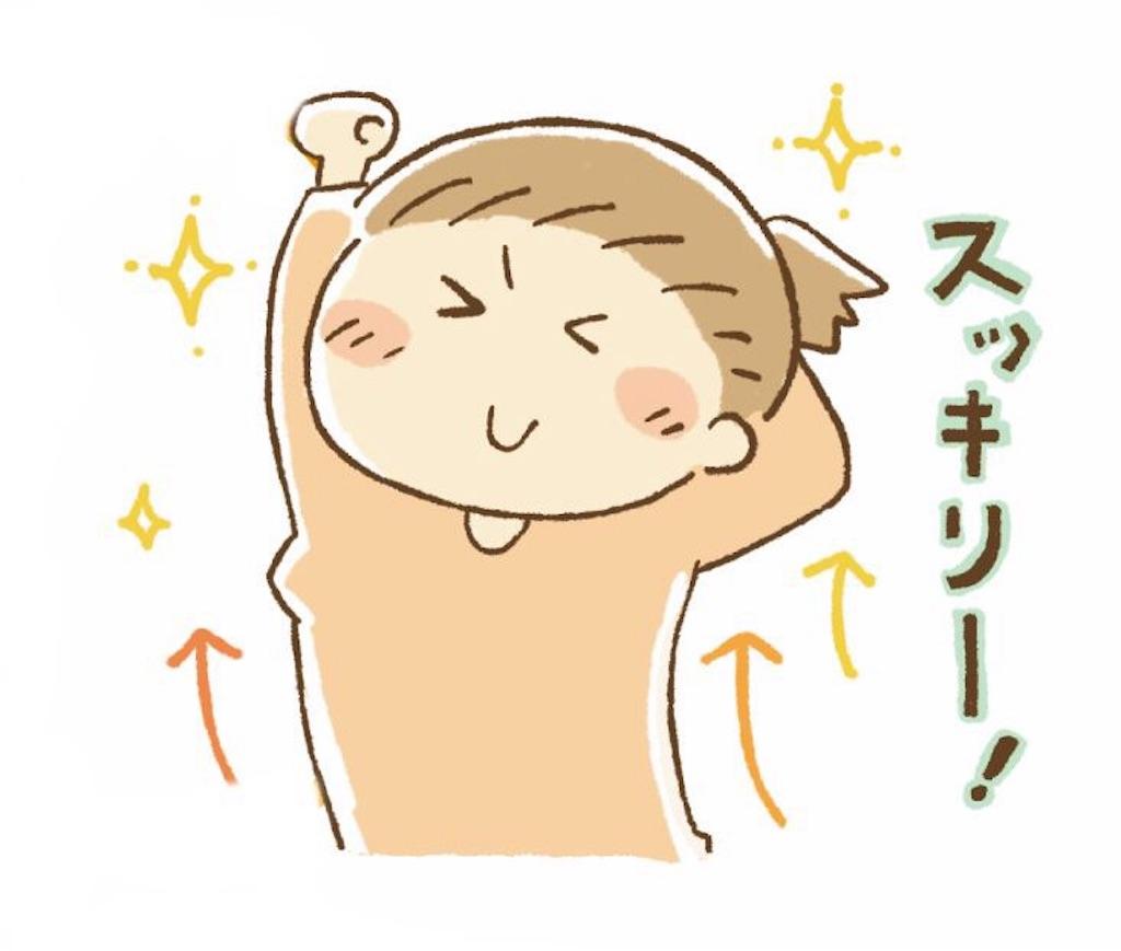 f:id:yuruyuruseitai:20180205073518j:image