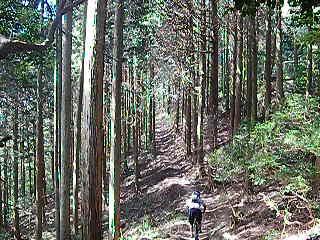 f:id:yuruyuruto:20100926103230j:image
