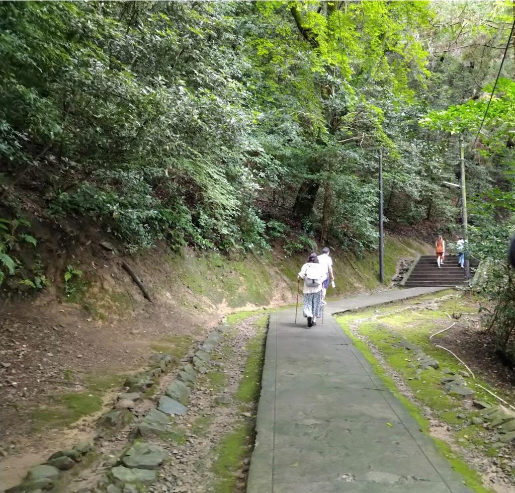 f:id:yuruyurutraveldiary:20210721211244j:image