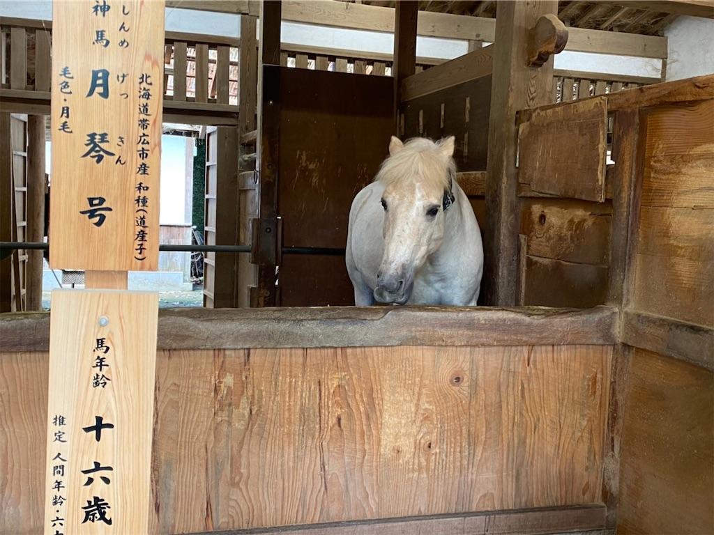 f:id:yuruyurutraveldiary:20210722104439j:image