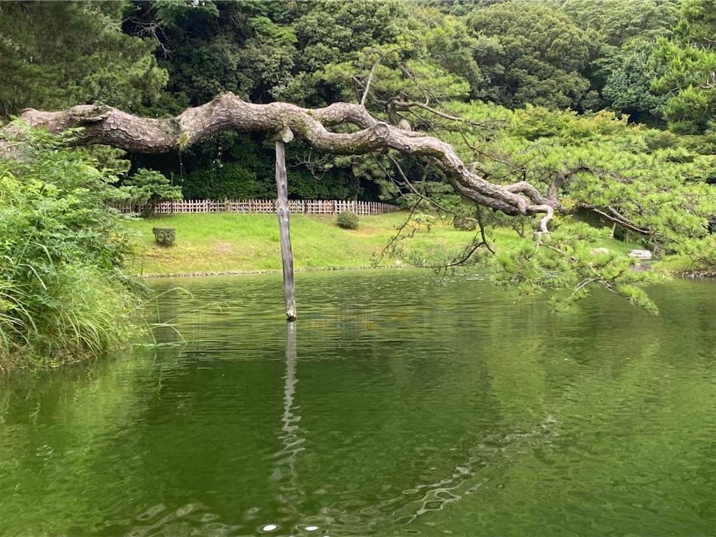 f:id:yuruyurutraveldiary:20210723102902j:image