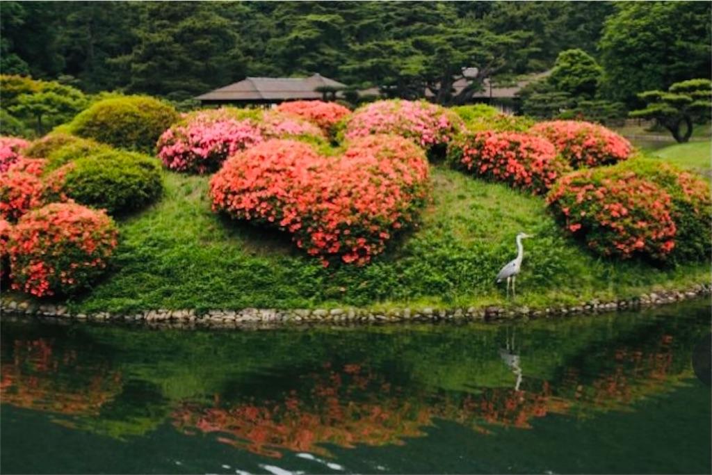 f:id:yuruyurutraveldiary:20210723130012j:image