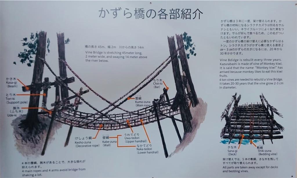 f:id:yuruyurutraveldiary:20210801231917j:image
