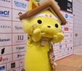 shimanekko.jpg