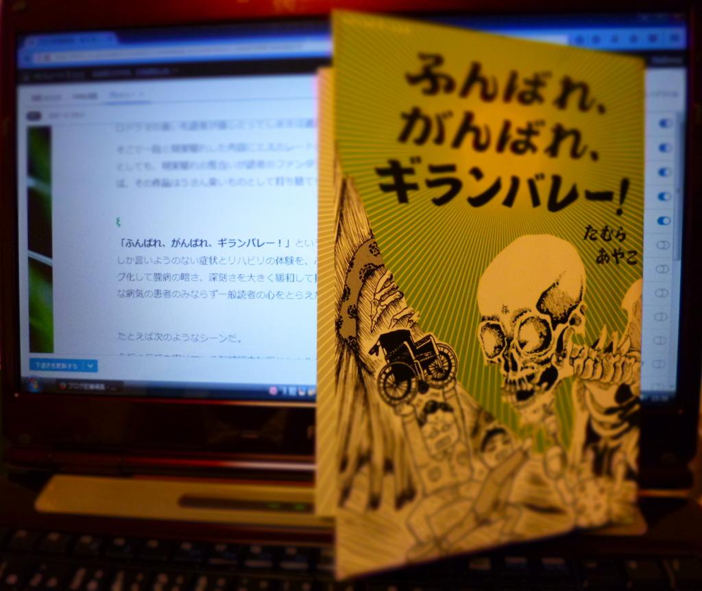 f:id:yusakum:20170303162230j:plain