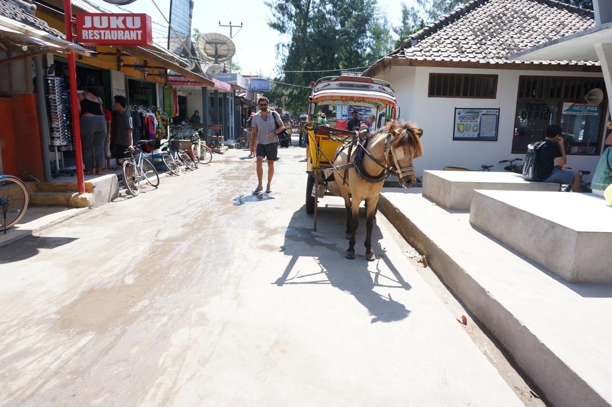 島内の移動で活躍するチドモ(馬車)