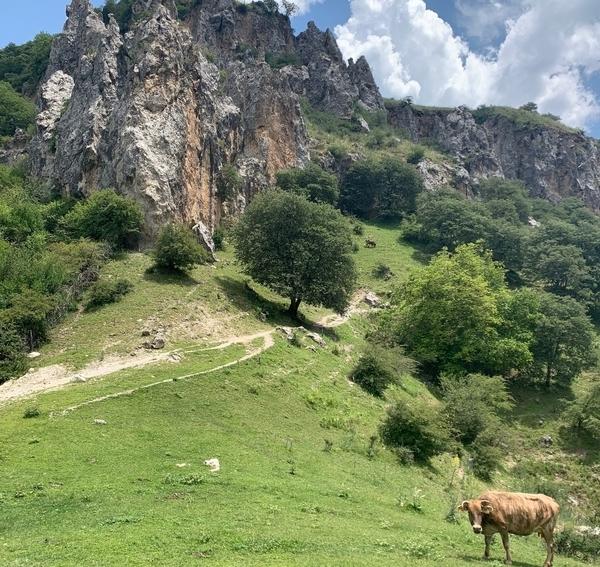 キルギス観光の醍醐味は綺麗な自然