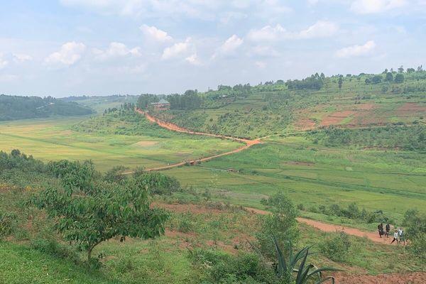 アフリカらしい豊かな自然、千の丘の国と称されるルワンダの景色
