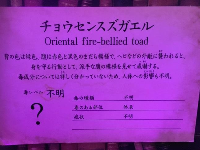 f:id:yusatoblog:20170401192212j:plain