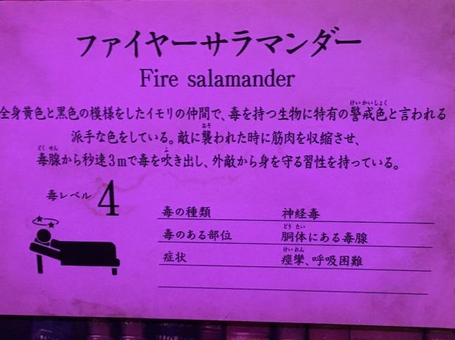 f:id:yusatoblog:20170401192523j:plain