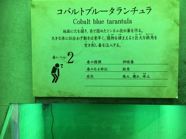 f:id:yusatoblog:20170401193157j:plain