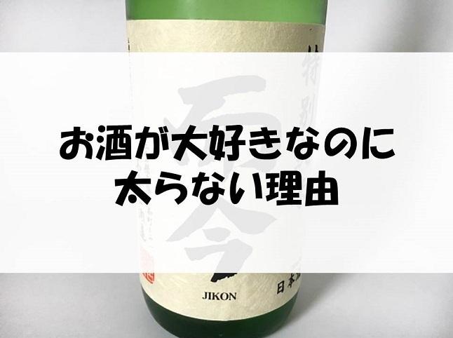 f:id:yusatoblog:20170619223024j:plain