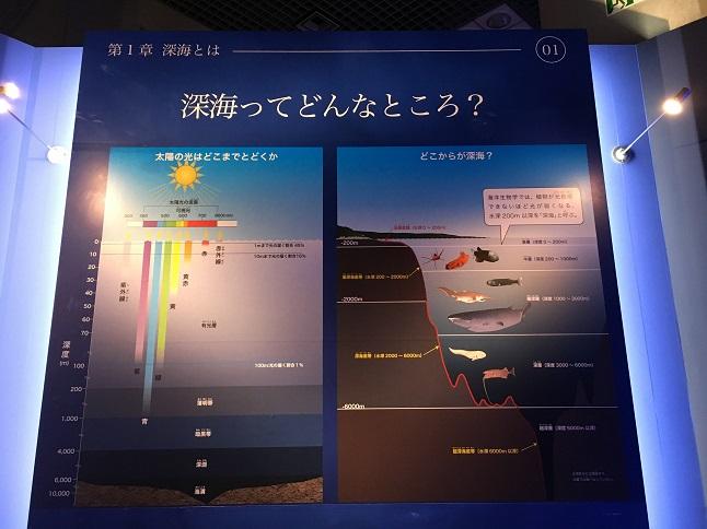 f:id:yusatoblog:20170805224251j:plain