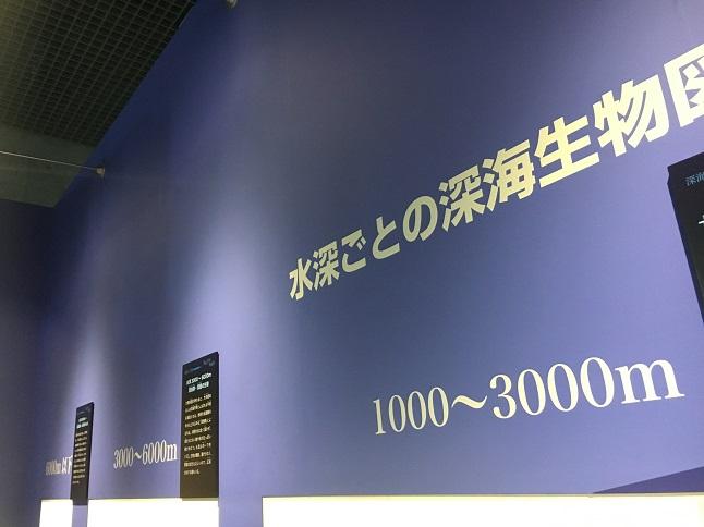 f:id:yusatoblog:20170805224550j:plain