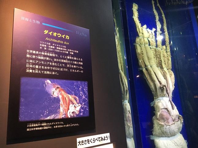 f:id:yusatoblog:20170805224712j:plain