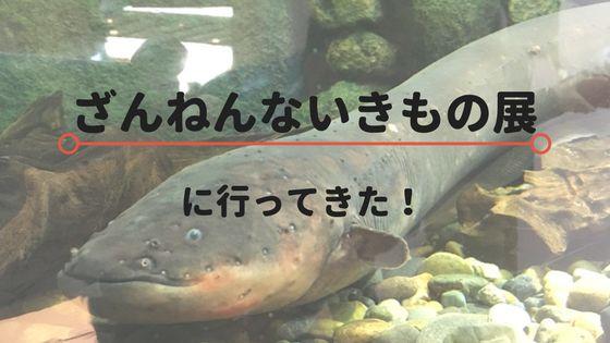 f:id:yusatoblog:20171111125318j:plain