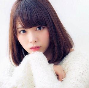 f:id:yusei01310625:20181204220651j:plain