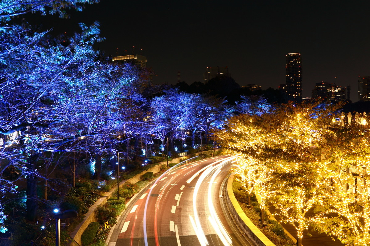 六本木の夜景
