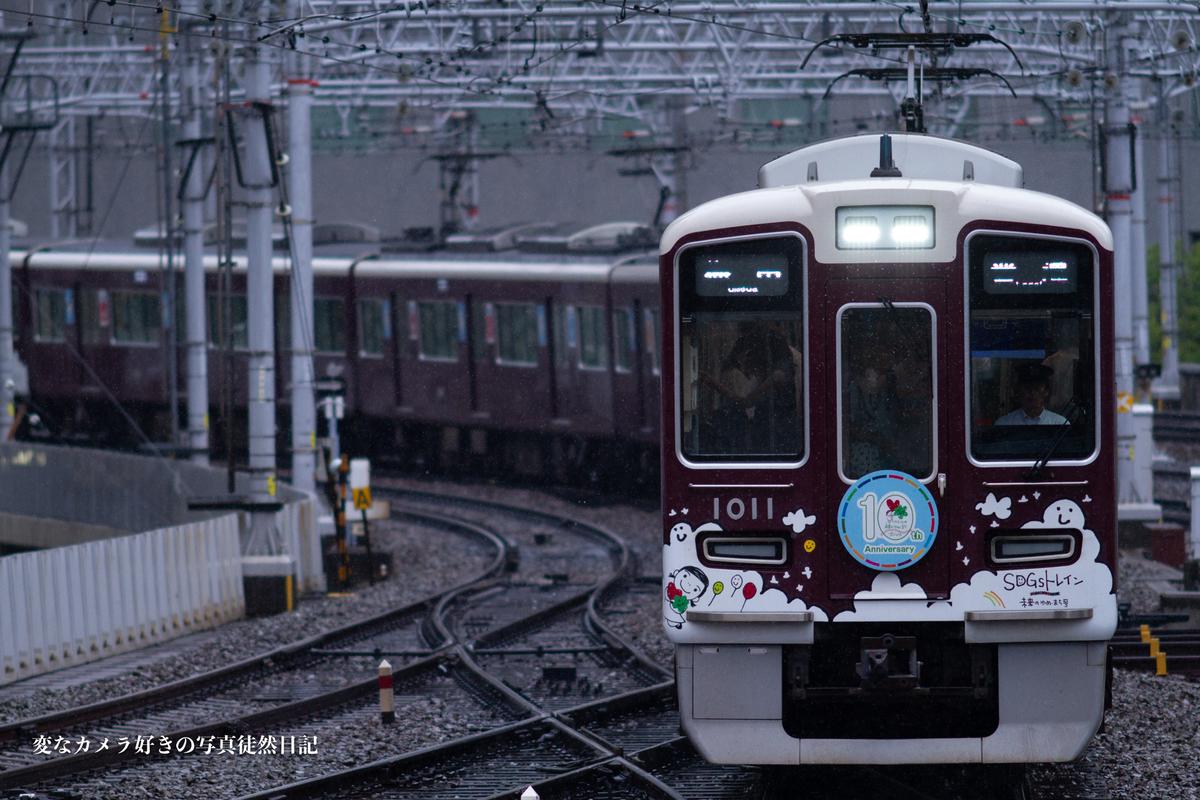 f:id:yuseiphotos:20190724160302j:plain