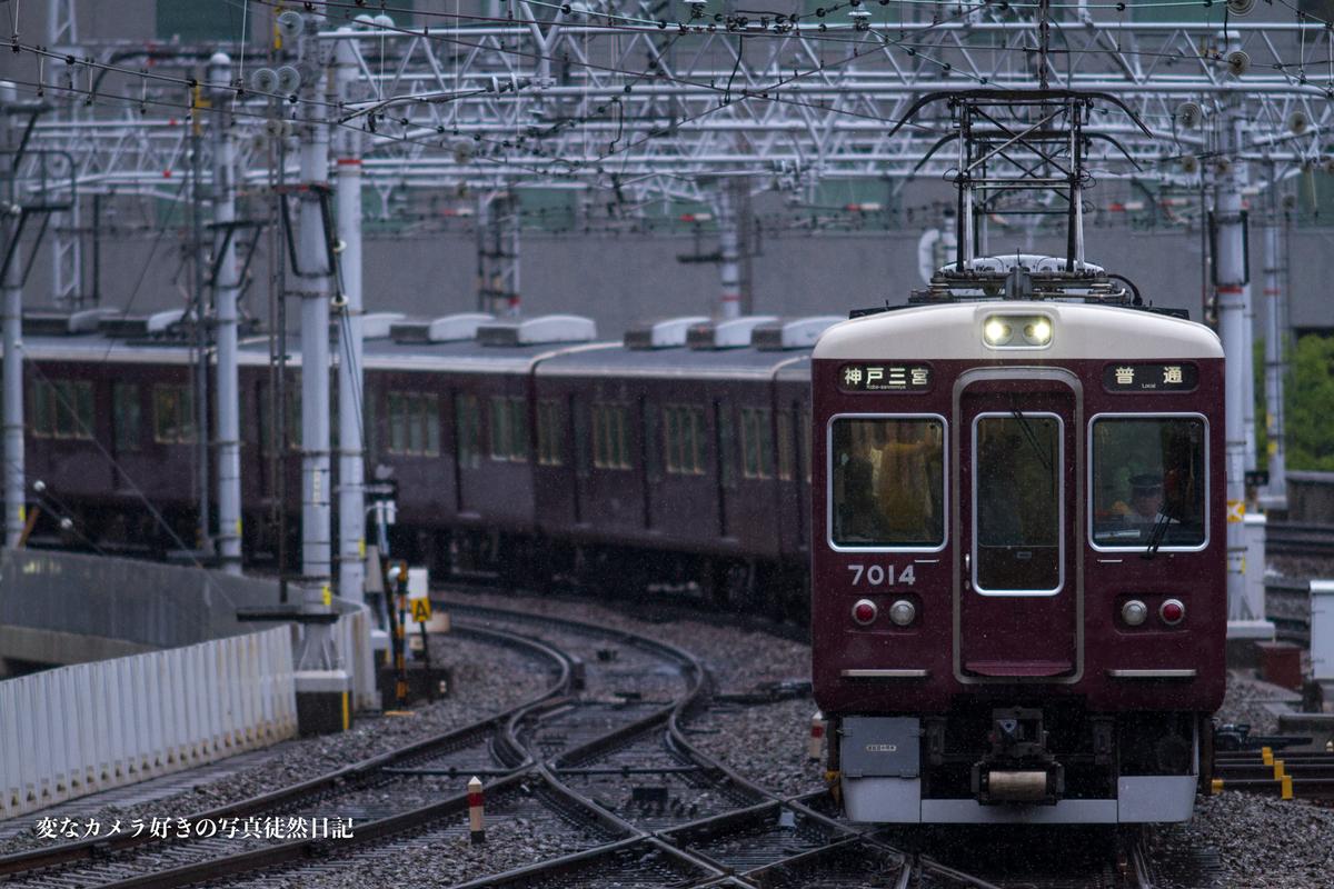 f:id:yuseiphotos:20190724160311j:plain