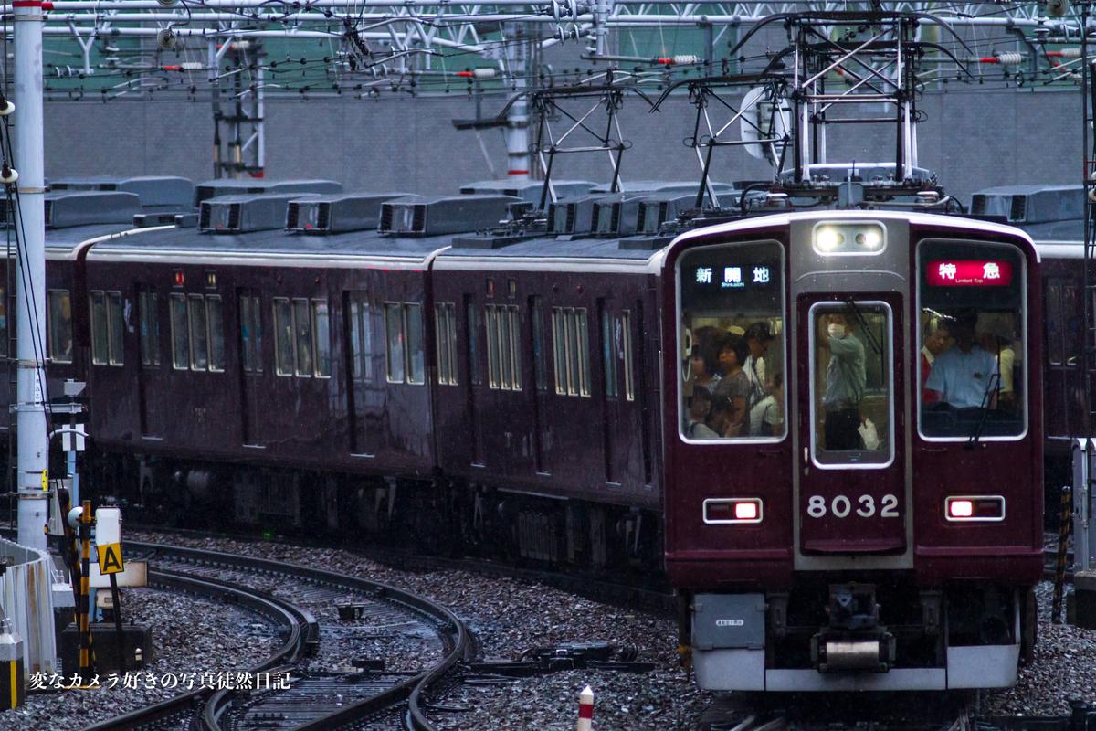 f:id:yuseiphotos:20190724160322j:plain