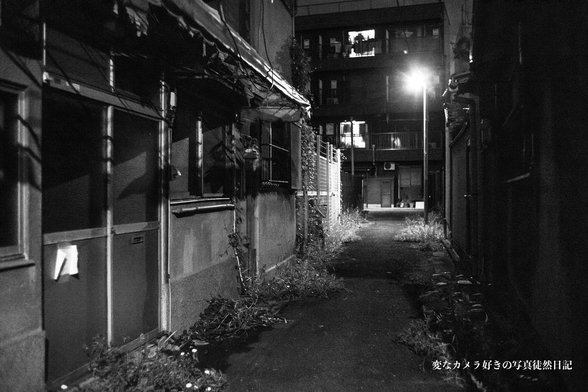 f:id:yuseiphotos:20191018124325j:plain