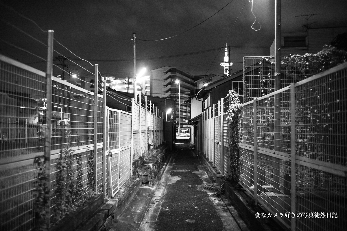 f:id:yuseiphotos:20191018124411j:plain