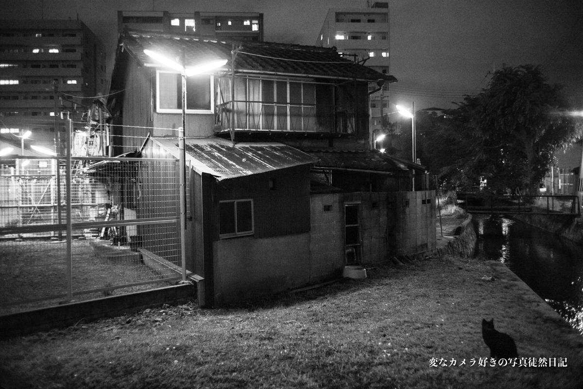 f:id:yuseiphotos:20191018124503j:plain