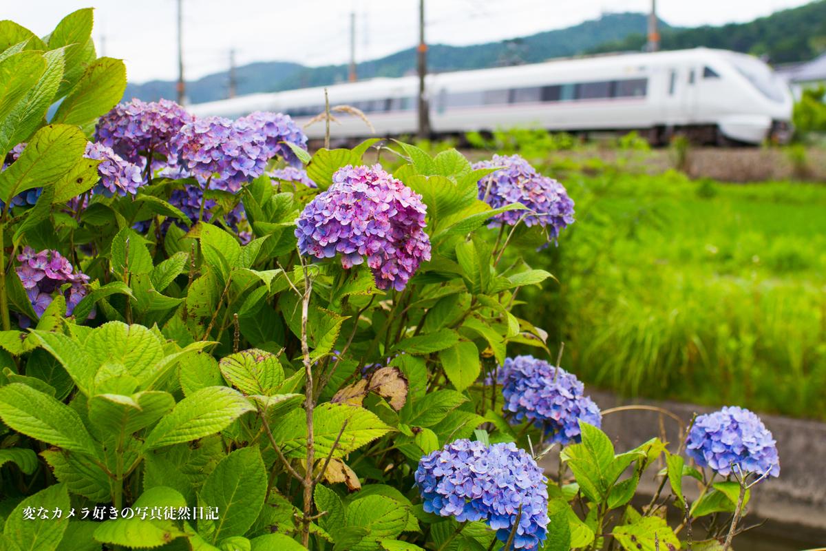 f:id:yuseiphotos:20191101144747j:plain