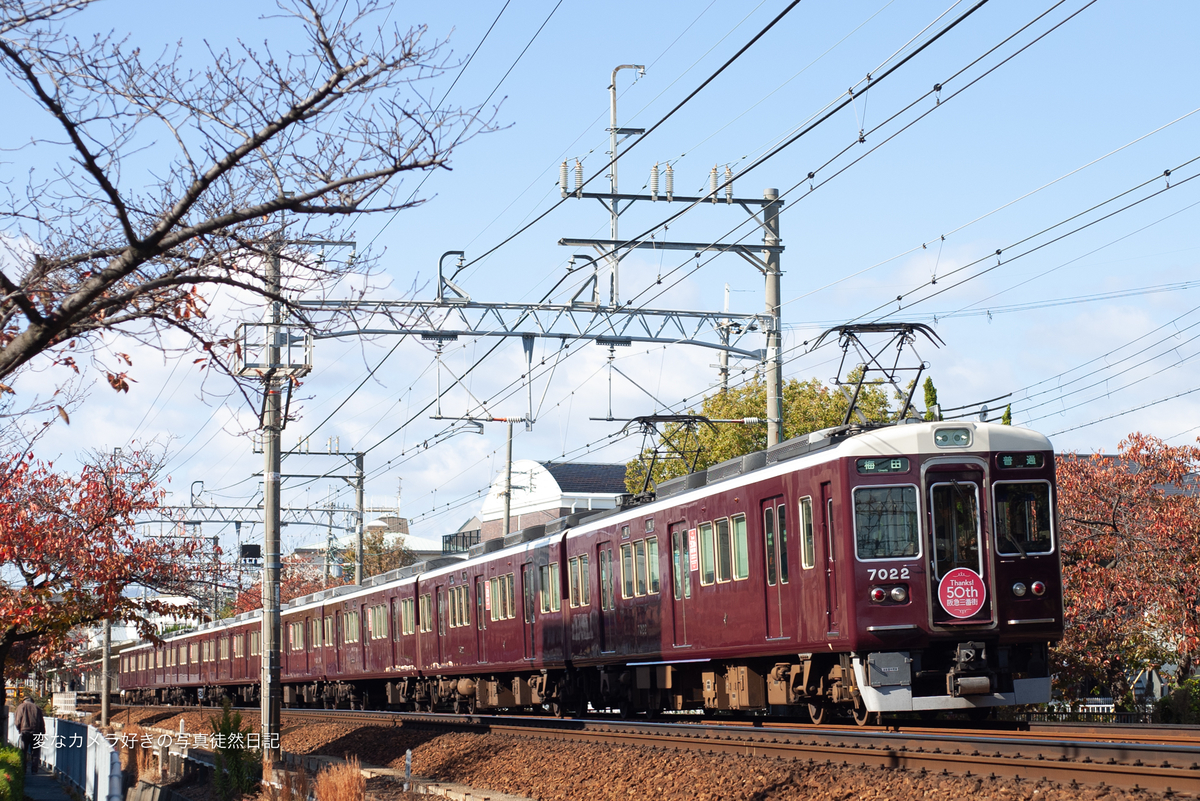 f:id:yuseiphotos:20191120132900j:plain