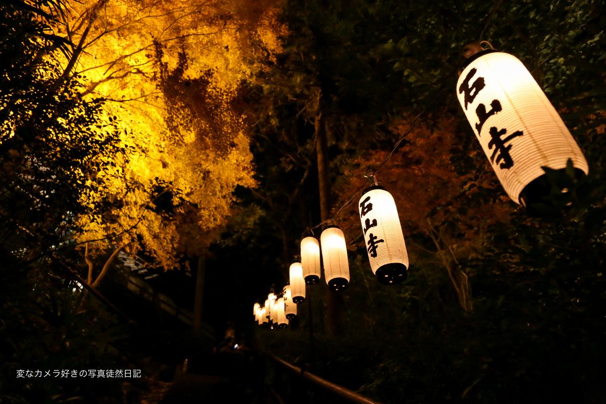 f:id:yuseiphotos:20191122212336j:plain