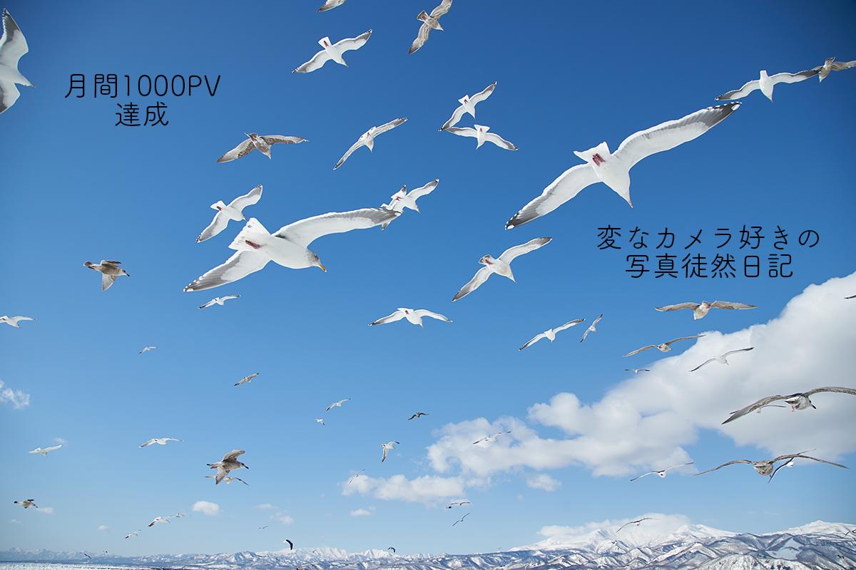 f:id:yuseiphotos:20200129050245j:plain