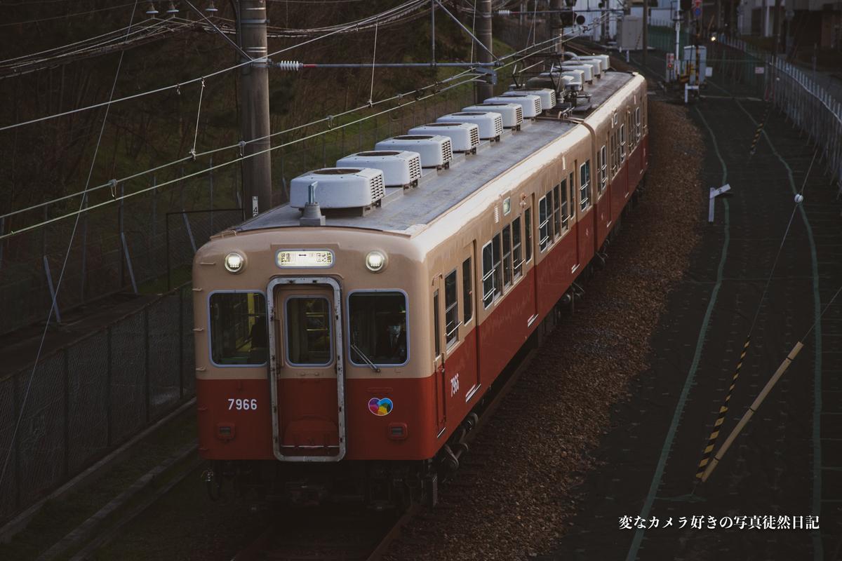 f:id:yuseiphotos:20200515183707j:plain