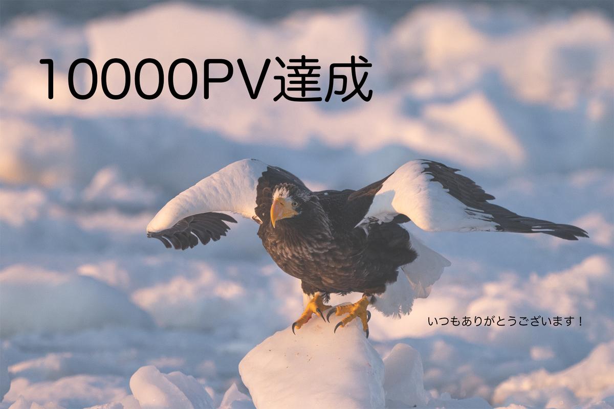 f:id:yuseiphotos:20200518182007j:plain
