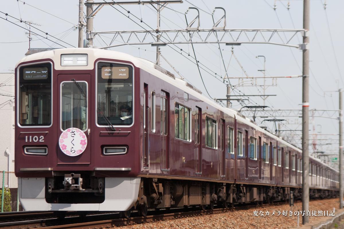 f:id:yuseiphotos:20200523021916j:plain
