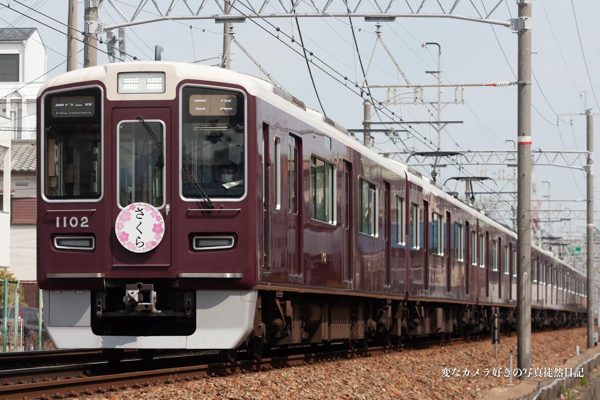 f:id:yuseiphotos:20200523173959j:plain